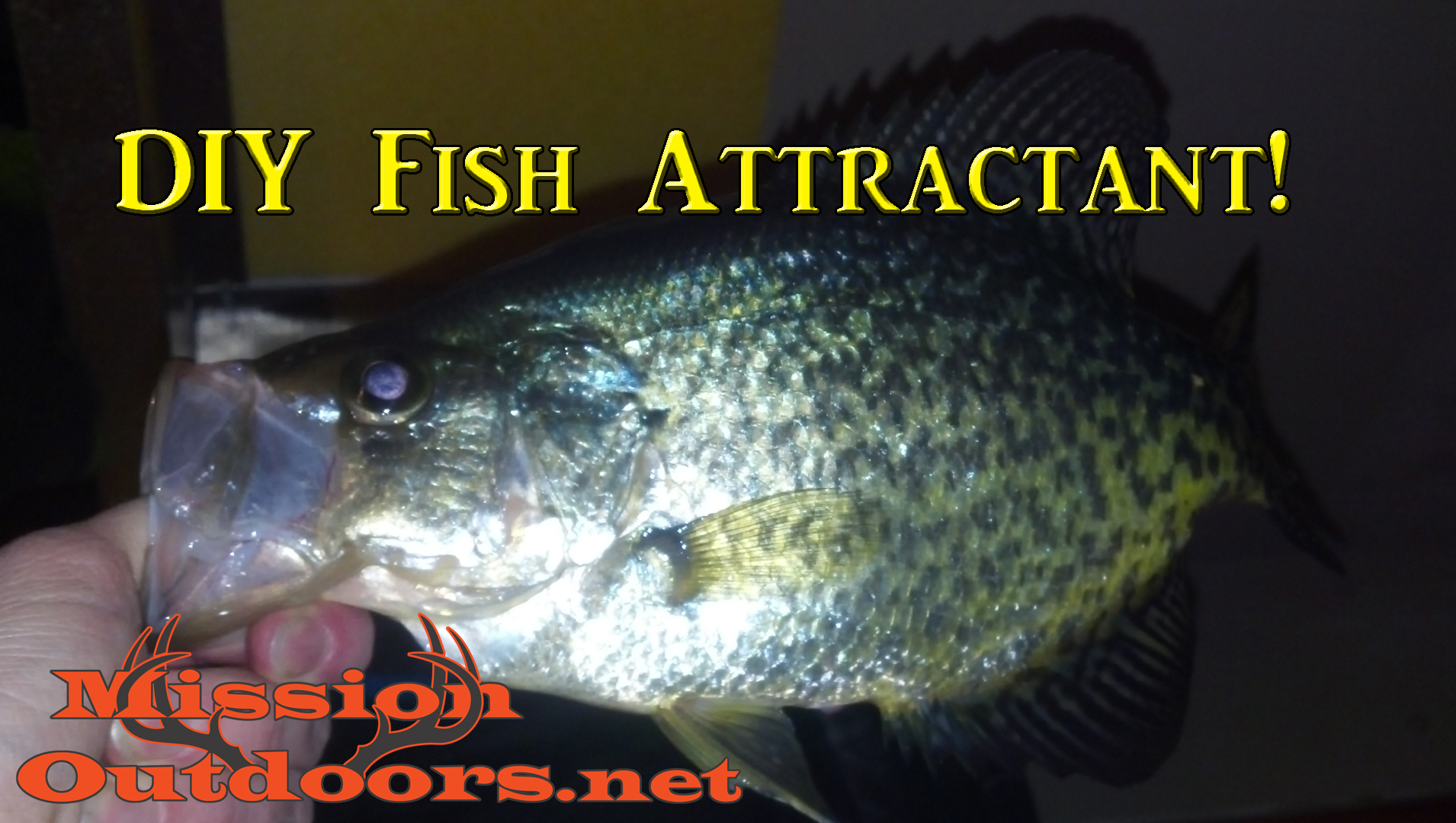 DIY Fish Attractant – MissionOutdoors.Net